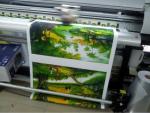 In tranh sơn dầu 3D nền vải canvas, vải bố canvas đẹp