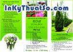 In Brochure bằng giấy couche chất lượng cao cho công ty Đà Lạt xứ hoa
