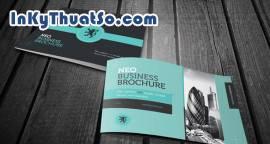Cảm hứng thiết kế Brochure sáng tạo