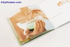 Giới Thiệu Thiết Kế Brochure Đẹp