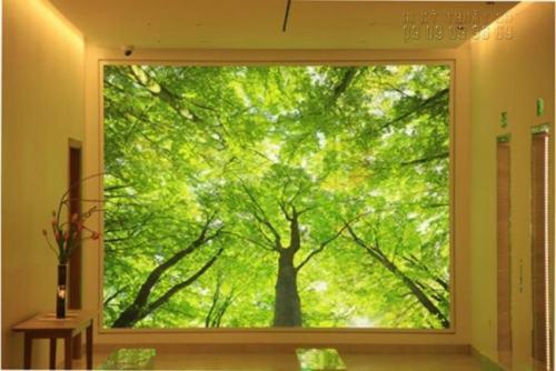 In backlit film làm phông nền tường nhà