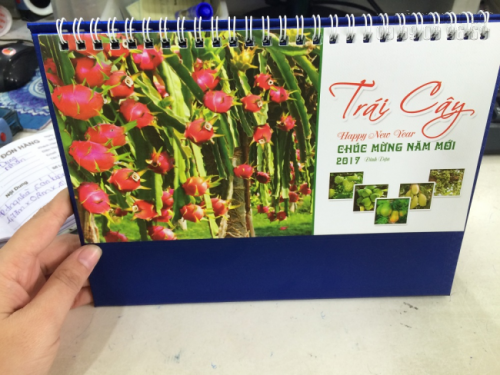 Mẫu lịch để bàn 2017 - Chủ đề Trái cây