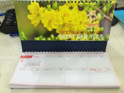 Mẫu lịch để bàn 2017 - Chủ đề Hoa mai 2
