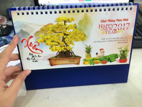 Mẫu lịch để bàn 2017 - Chủ đề Hoa mai 1