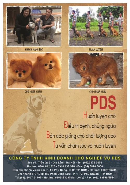 In ấn Tờ rơi TPHCM, 1024, Nguyễn Liên, InKyThuatso.com, 16/12/2016 11:35:52