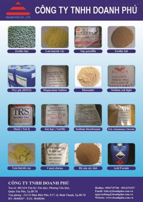 Tờ rơi quảng cáo cho Công ty TNHH Doanh Phú về sản phẩm các loại hạt nông nghiệp
