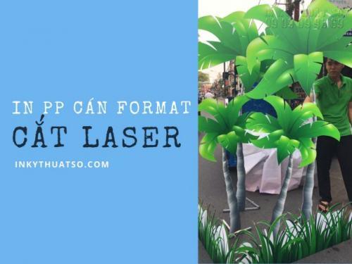 In PP cán format cắt laser từ In Kỹ Thuật Số