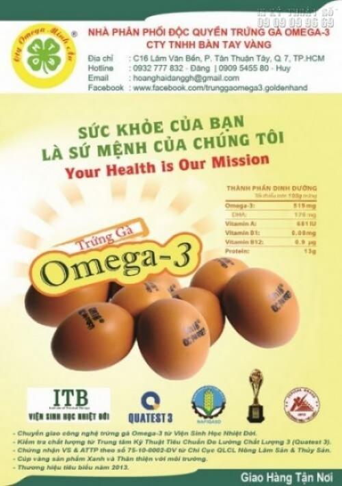 Tờ rơi khổ A5 với nội dung quảng cáo trứng gà Omega - 3 đẹp