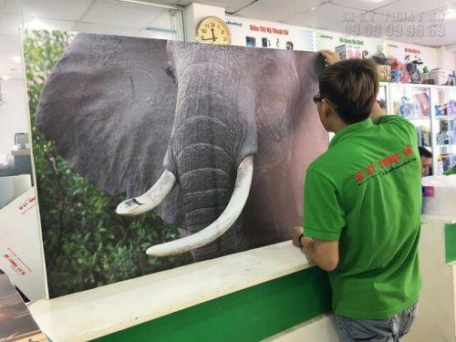 In tranh con voi