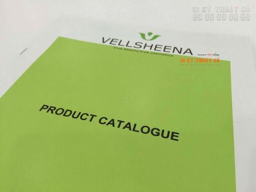 In catalogue giá rẻ, thiết kế catalogue chât lượng tại Cty TNHH In Kỹ Thuật Số