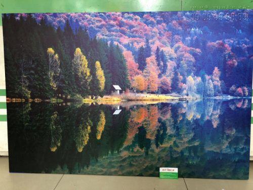 In tranh vải bố - in tranh trên vải bố, tranh canvas - in tranh tấm lớn treo tường phòng khách - in trực tiếp từ ảnh chụp, ảnh độ phân giải cao tải từ internet - trực tiếp in từ In Kỹ Thuật Số
