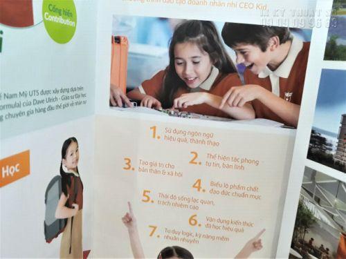thiết kế catalogue TPHCM 4