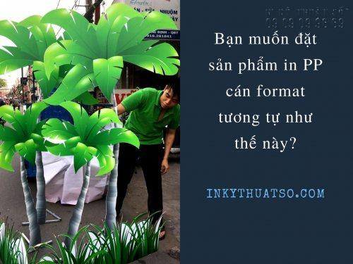 In PP cán Format, 1080, Phương Mai, InKyThuatso.com, 03/06/2017 11:09:41