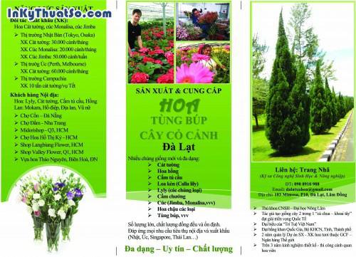 In Brochure bằng giấy couche chất lượng cao cho công ty Đà Lạt xứ hoa, 430, Minh Trần, InKyThuatso.com, 27/02/2018 09:20:40