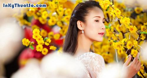 Thái Hà đẹp dịu dàng cùng hoa mai, 278, Canhle, InKyThuatso.com, 20/02/2013 13:38:43